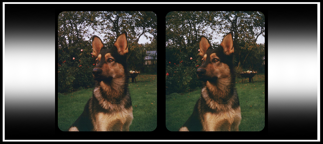 1960s Stereo-Camera Slides Part 1
