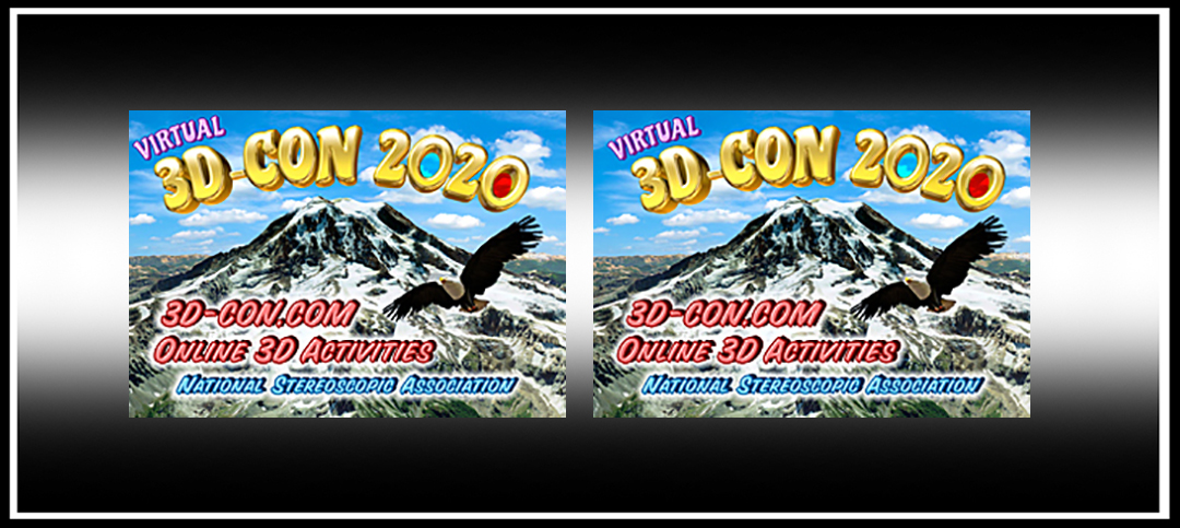 NSA's Virtual 3D-Con 2021 Dates Announced and Call for Papers