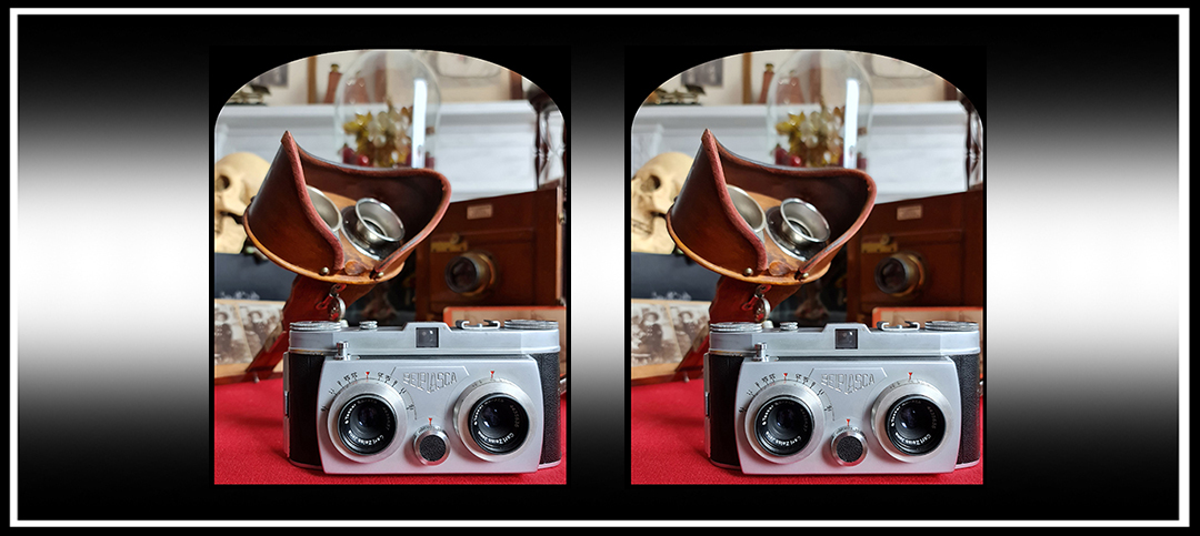 On Test: Belplasca Stereo Camera and Kosmo Foto Agent ShadowFilm